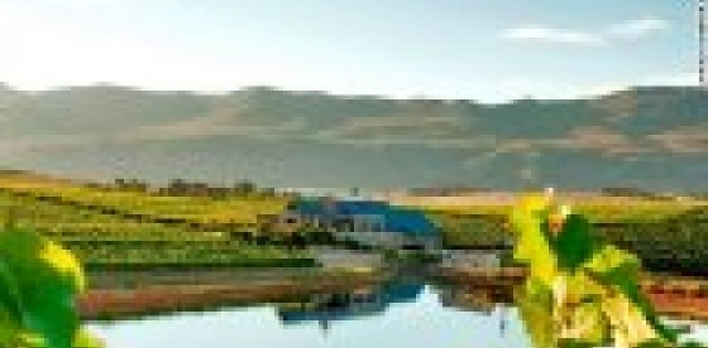 10 sensational South African wine farms